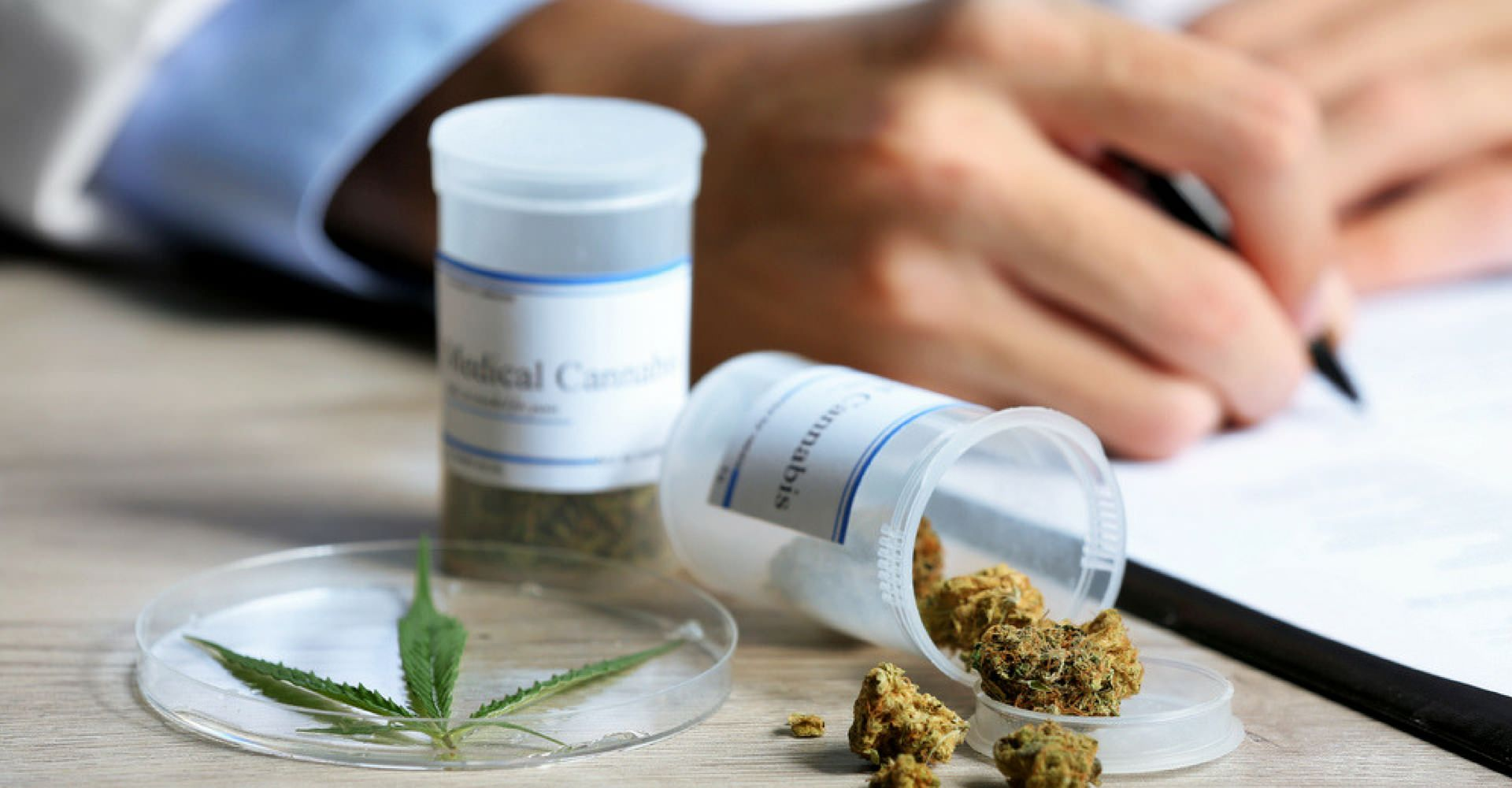 Choroby Nowotworowe, a Marihuana Medyczna, CarBOO
