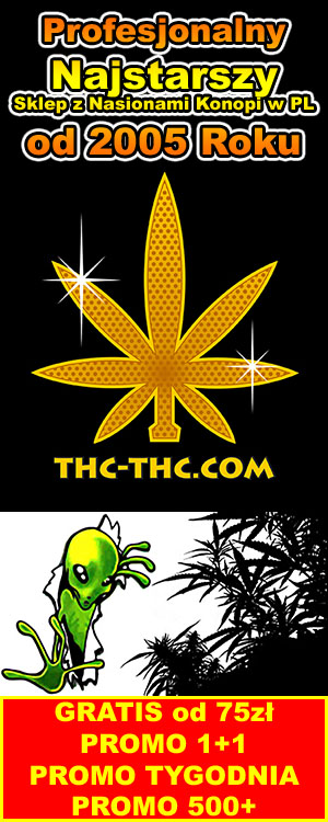 thc-thc.com