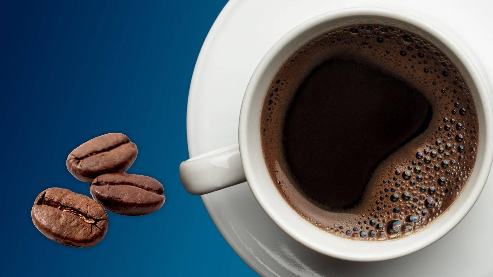 Wszystko na Temat Kawy, CarBOO